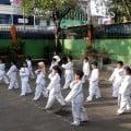 Sabuk Putih di Unit Taekwondo SDN Pengadilan 2 Kota Bogor