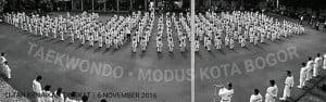 Ujian Kenaikan Tingkat Taekwondo Modus Club Bogor November 2016