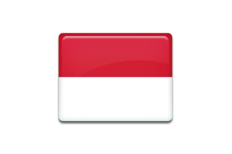 Timnas Indonesia Memulai Dengan Kekalahan Di AFF Suzuki Cup 2018