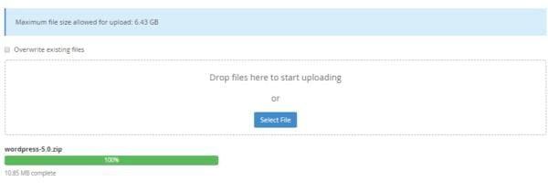 Cara Update Manual WordPress lewat cPanel untuk Pemula