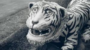 Kumpulan Foto Patung Macan Lucu (BIKIN NGAKAK!!!)